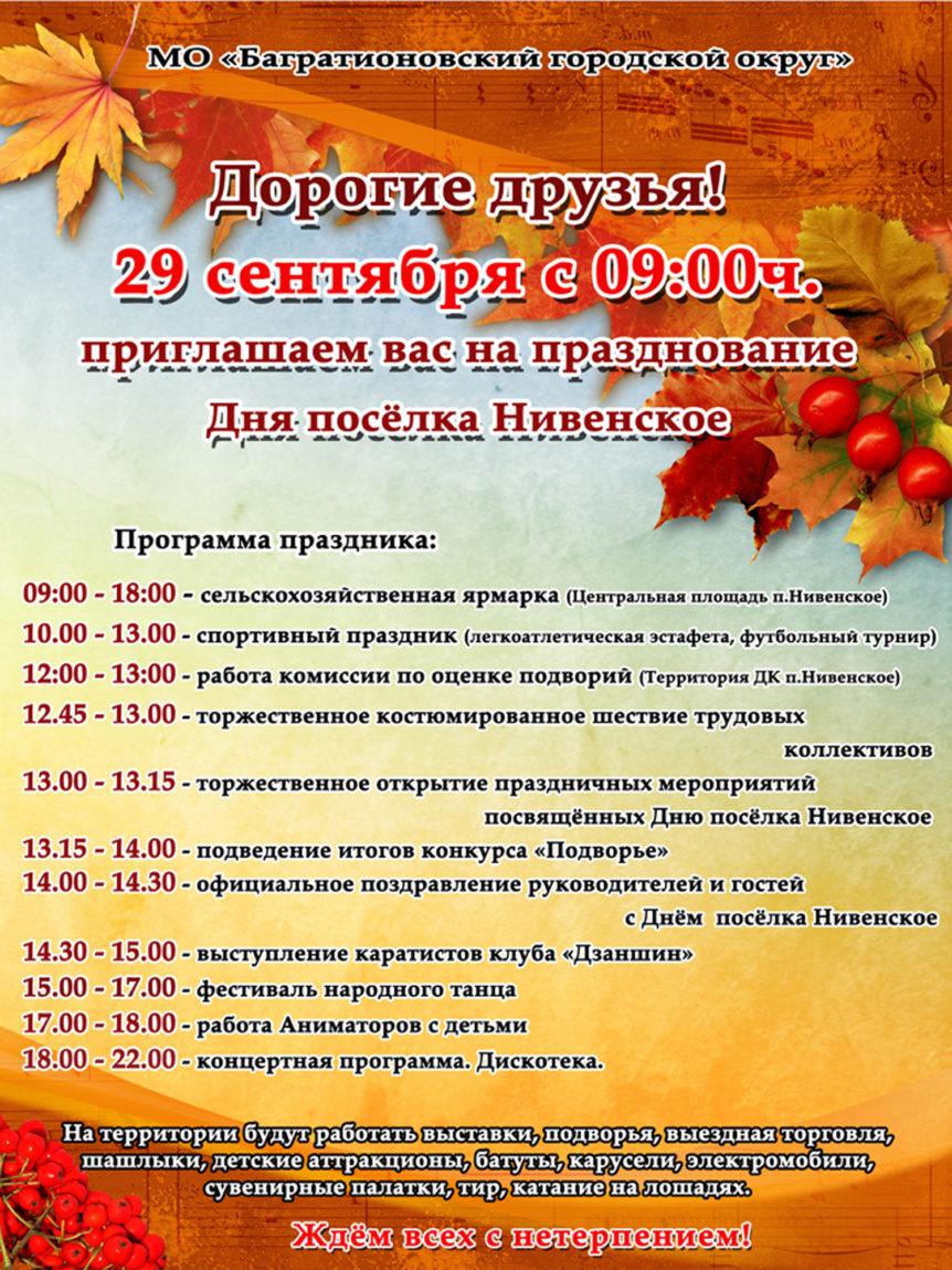 Афиша день Нивенского-4